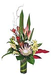 TAYLOR - Tropical vase arrangement